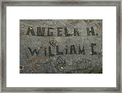 Etched In Wood Framed Print by Frozen in Time Fine Art Photography