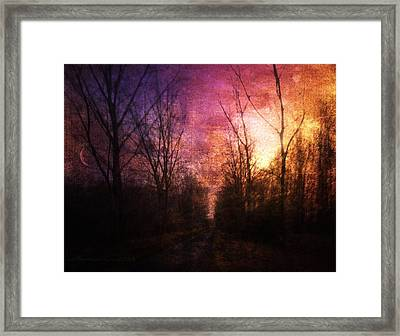 Eternal Enigma Framed Print by Mimulux patricia no No