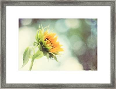 Eternal Optimist Framed Print by Amy Tyler