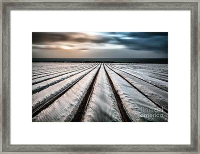 Eternally Everything Framed Print by John Farnan