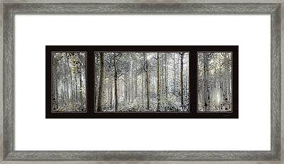 Etheral Forest Triptych Framed Print by Leland D Howard