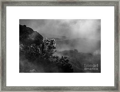 Ethereal Beauty In Black And White Framed Print