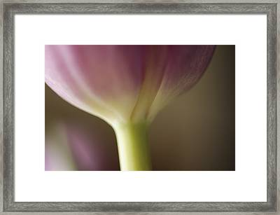 Ethereal Curvature Framed Print