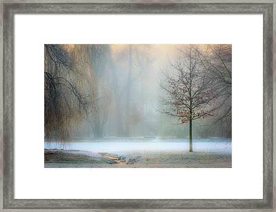 Ethereal Daybreak Framed Print
