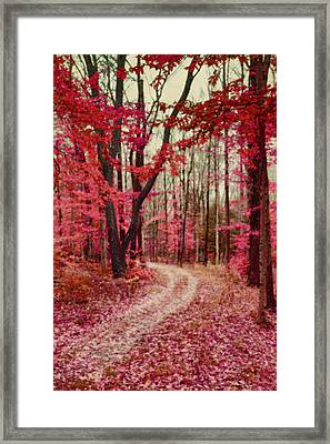Ethereal Forest Path With Red Fall Colors Framed Print