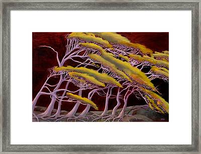 Ethereal Winds Framed Print by Sue  Darius