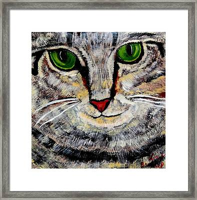 Ethical Kitty See's Your Dilemma Framed Print by Lisa Brandel