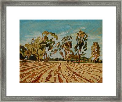 Framed Print featuring the painting Eucalypus Trees Near Bloemfontein by Thomas Bertram POOLE