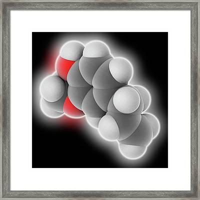 Eugenol Molecule Framed Print