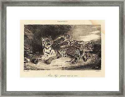 Eugène Delacroix French, 1798 - 1863, Young Tiger Playing Framed Print