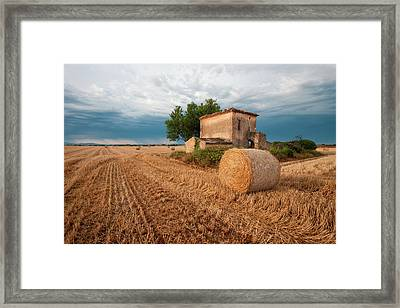 Europe, France Hay Bale In Provence Framed Print by Jaynes Gallery