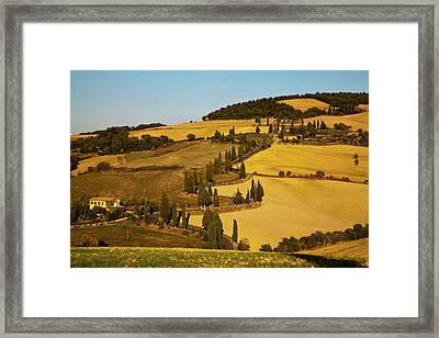 Europe, Italy, Tuscany, Zig Zag Road Framed Print