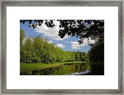 Europe, Russia, Pushkin Framed Print