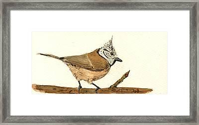 European Crested Tit Framed Print