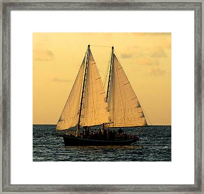 More Sails In Key West Framed Print