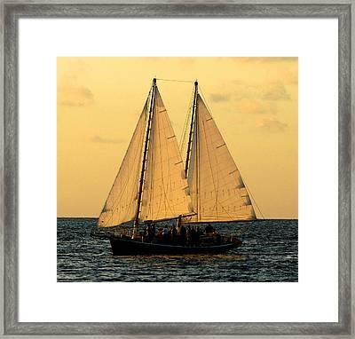 More Sails In Key West Framed Print by Bob Slitzan