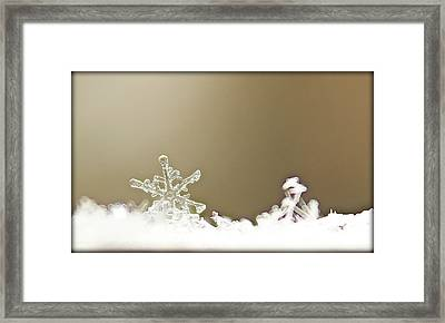 Even The Smallest Things Framed Print