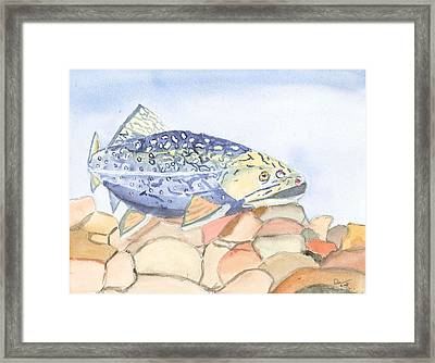 Even Troutbums Get The Blues Framed Print by David Crowell