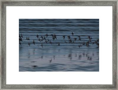 Framed Print featuring the photograph Evening Abstract by Alex Lapidus