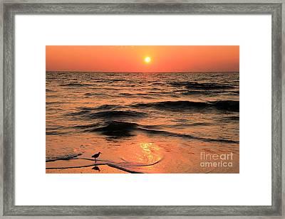 Evening Beach Stroll Framed Print