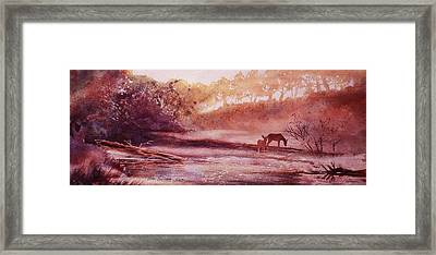 Evening By The Creek Framed Print by John  Svenson