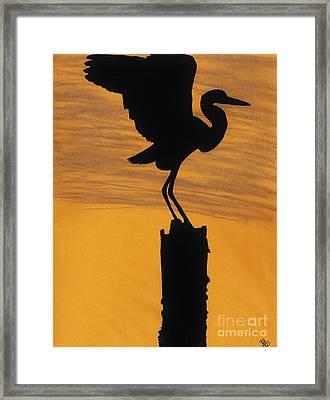 Evening - Egret Framed Print