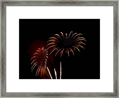 Framed Print featuring the photograph Evening Flowers by Linda Mishler