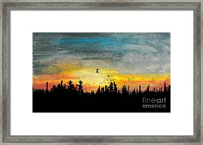 Evening Freedom Framed Print