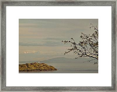 Evening Glow No. 2 Framed Print by Janet Ashworth