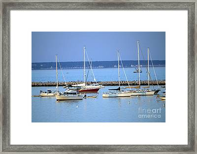 Evening I The Harbor Framed Print
