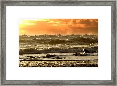 Evening In Kinard Framed Print by Barbara Walsh