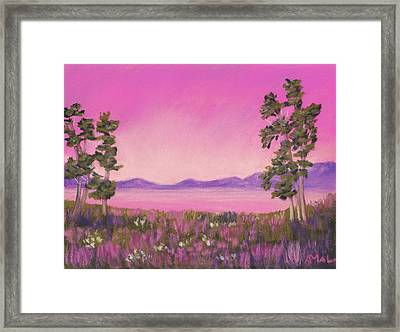 Evening In Pink Framed Print