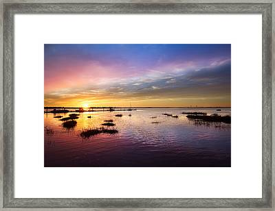 Evening Light Framed Print by Debra and Dave Vanderlaan