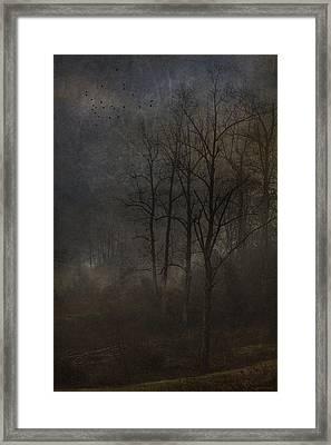Evening Mist Framed Print by Ron Jones