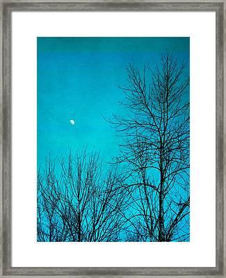 Evening Moon Framed Print