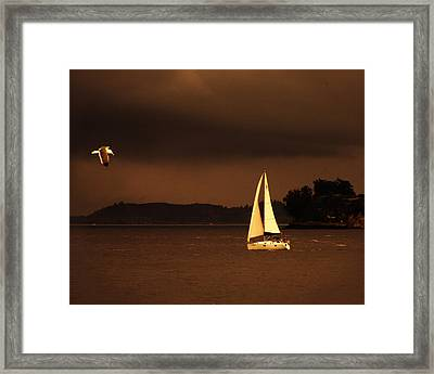 Framed Print featuring the photograph Evening Near Sausalito  by Chuck Caramella