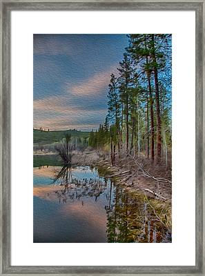 Evening On The Banks Of A Beaver Pond Framed Print by Omaste Witkowski