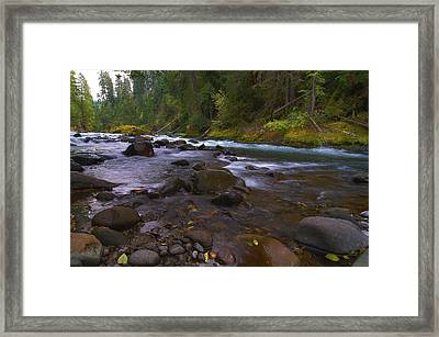 Evening On The Santiam River Framed Print