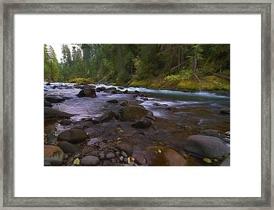 Evening On The Santiam River Framed Print