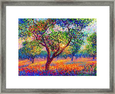 Evening Poppies Framed Print