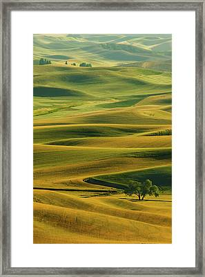Evening Quiet Framed Print by Latah Trail Foundation