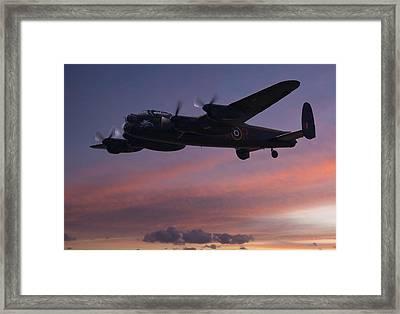 Evening Raider Framed Print