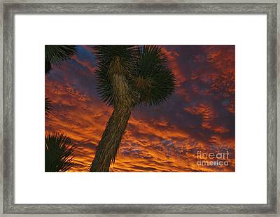 Evening Red Event Framed Print