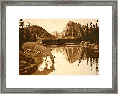 Evening Reflections Framed Print by Roger Jansen