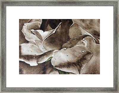 Evening Rose  Framed Print by Enola McClincey