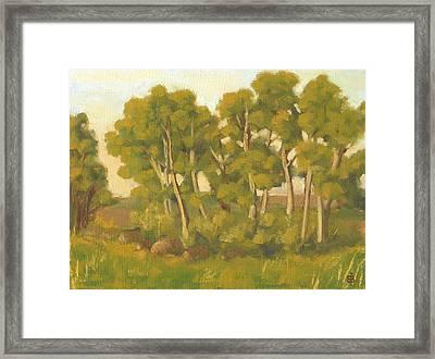 Evening Sets Framed Print by Bibi Snelderwaard Brion