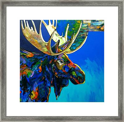 Evening Shadows Framed Print