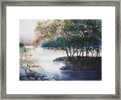Evening Shadows Framed Print by Judy Meng