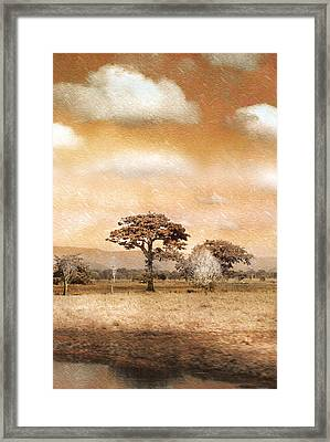 Evening Showers Framed Print by Holly Kempe