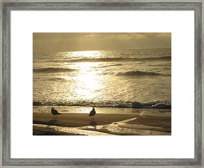 Framed Print featuring the photograph Evening Stroll by Judith Morris